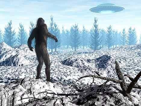 sasquatch ufo