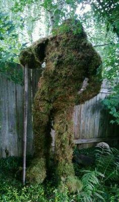 moss-art-gardens
