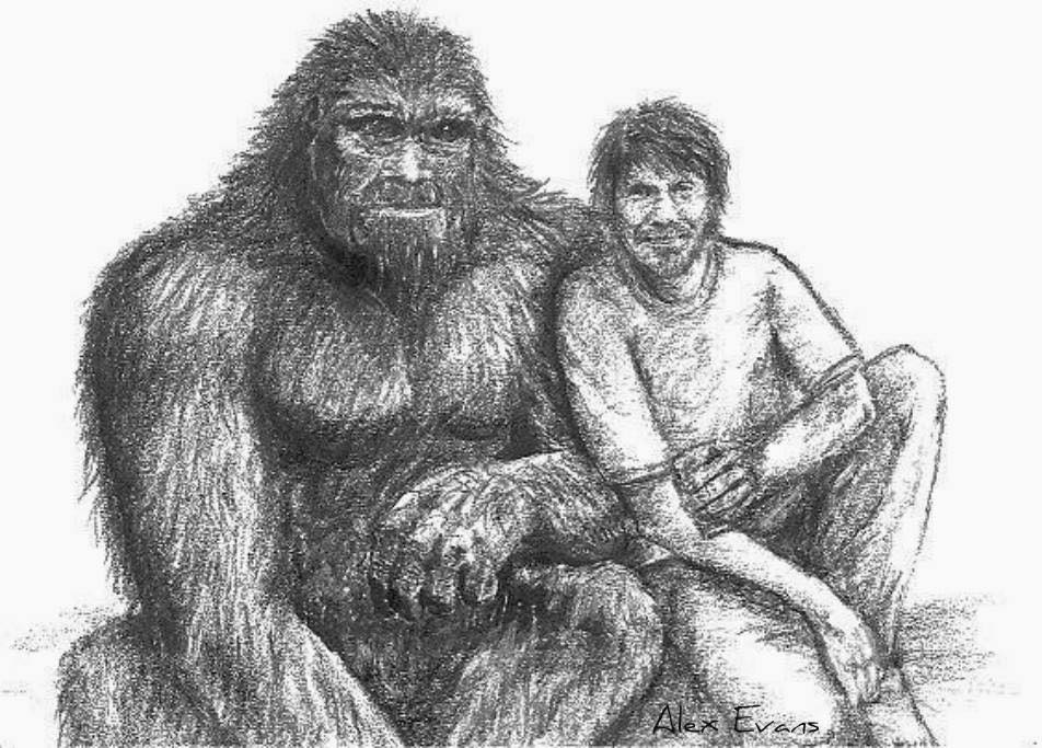 sasquatch friendship