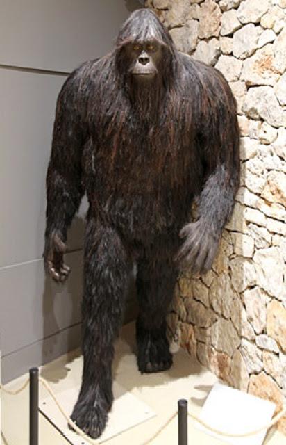 sasquatch museum
