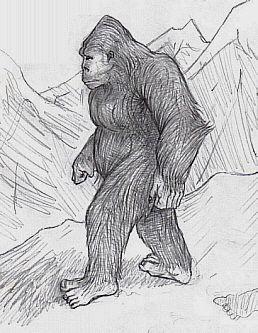 bigfoot-sasquatch-mountain-man
