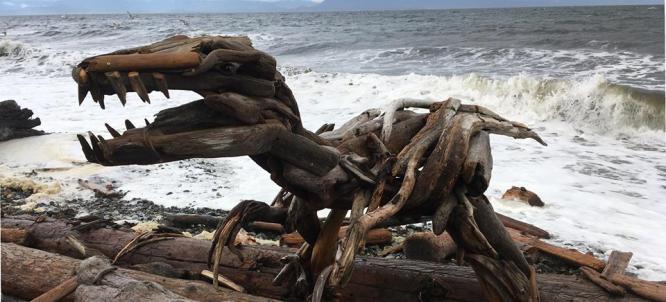 quadra driftwood-artist-trex