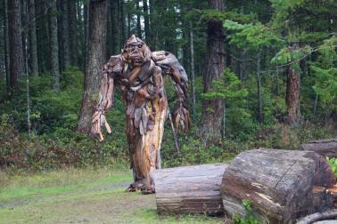 Quadra driftwood Sasquatch Alex Whitcomb