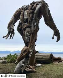 Quadra driftwood