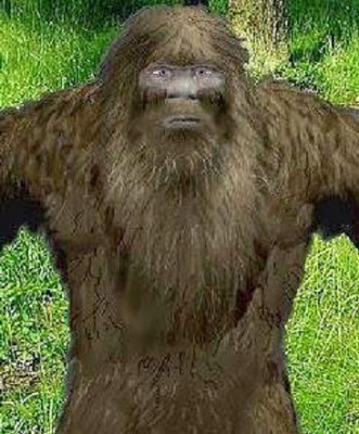 bigfoot bearded civil war