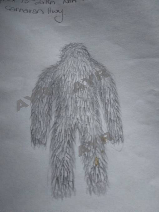 Yowie drawing