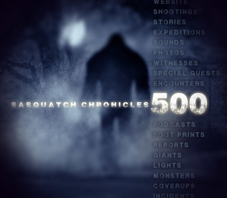 500 sas-chronicles-blue-500-768x668