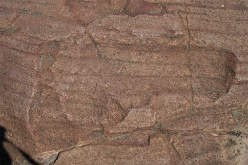 fossil 16 botswana