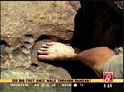 fossil 18 ohio
