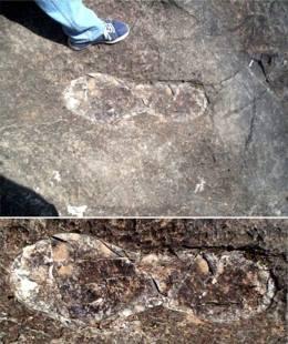 fossil 24 valencia spain