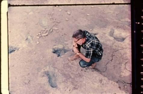 fossil 3 paluxy tx