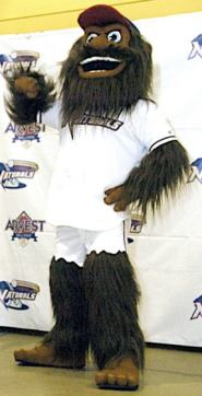 mascot 19