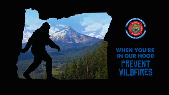 2019 bigfoot campaign