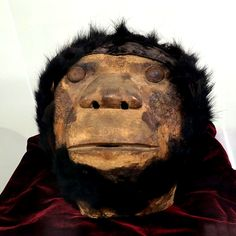 75 years missing mask returns -sasquatch