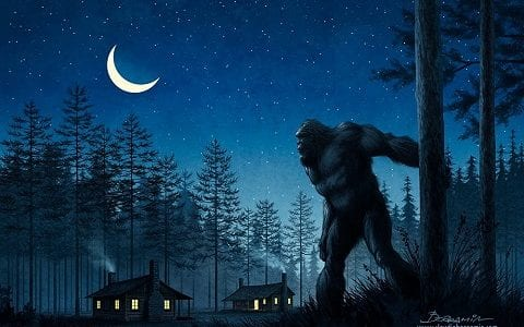 SASQUATCH-LOOKING3-480x300