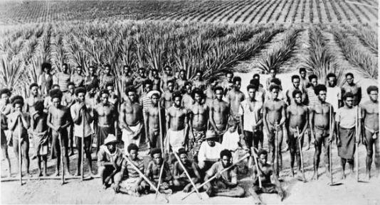 slavery QLD_south_sea_islanders