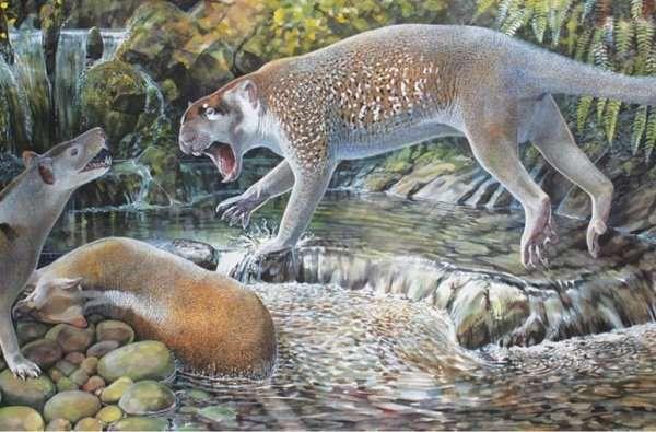 bunyip marsupial_lion